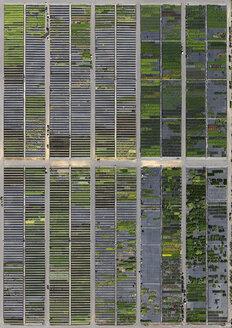 Full frame shot of crop fields in landscape, Hohenheim, Stuttgart, Baden-Wuerttemberg, Germany - FSIF01309