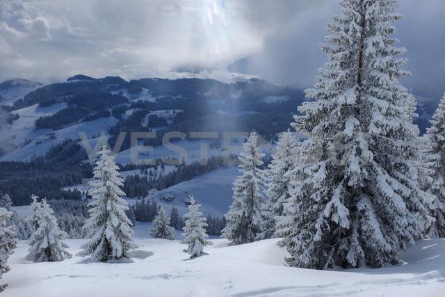 Germany, Bavaria, Chiemgau, Chiemgau Alps, Sachrang, Spitzstein in winter - HAMF00266
