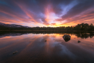 United Kingdom, Scotland, Highlands, Cairngorms National Park, Loch Morlich, sunset - SMAF00943