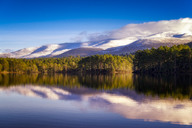 United Kingdom, Scotland, Highlands, Cairngorms National Park, Loch an Eilean, winter - SMAF00946
