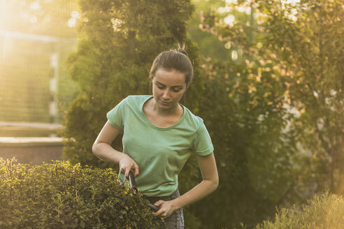 Woman cutting plants with pruning shears at yard - FSIF01402