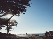 Damaged car on roadside against clear blue sky, Carmel By The Sea, California, USA - FSIF01807