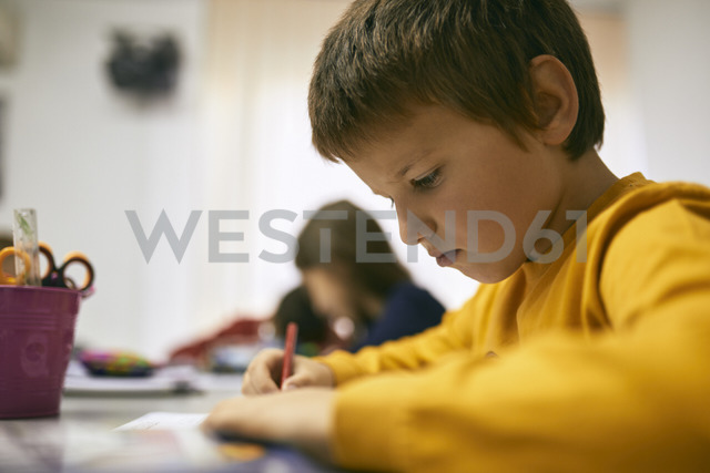 Student learning in class - ZEDF01213