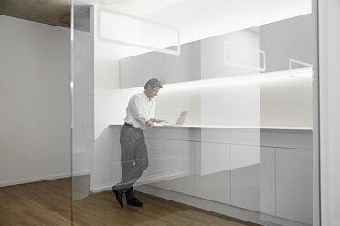 Businessman using laptop in modern office - PDF01548