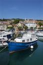 Croatia, Istria, Adria, Kvarner Gulf, Volosko, harbour - WWF04188