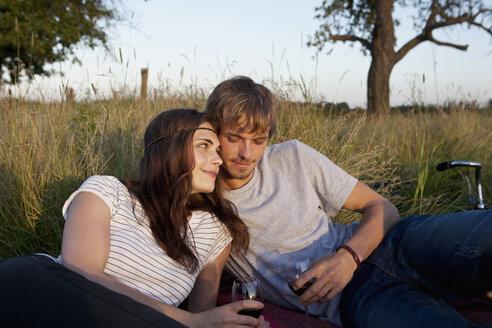Boyfriend and girlfriend drinking wine in field - FSIF02907