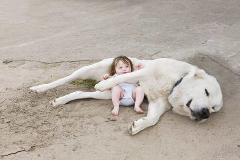 A baby lying with a dog - FSIF02919