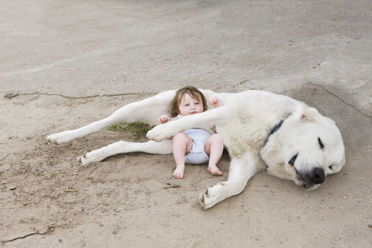 A baby lying with a dog - FSIF02919 - fStop/Westend61
