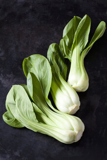 Chinese cabbage on dark metal - CSF28981