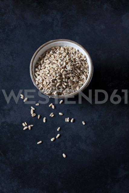 Bowl of spelt grains on dark ground - CSF28987