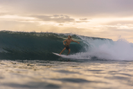 Indonesia, Sumatra, surfer on a wave at sunset - KNTF00977
