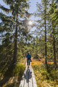 Germany, Bavaria, Lower Bavaria, Bavarian Forest National Park, female hiker on wooden boardwalk - FOF09832