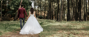 Back view of bride and groom walking in forest - DAPF00893