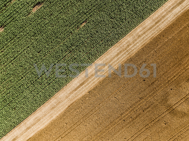 Serbia, Vojvodina, agricultural fields, aerial view at summer season - NOF00001