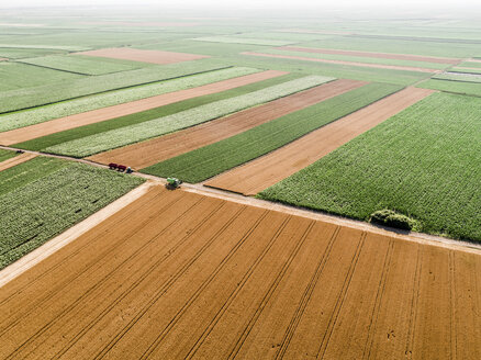 Serbia, Vojvodina, agricultural fields, aerial view at summer season - NOF00004