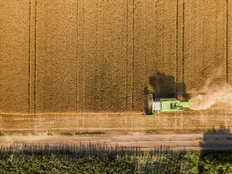 Serbia, Vojvodina. Combine harvester on a field of wheat, aerial view - NOF00007