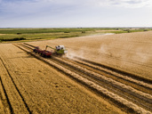 Serbia, Vojvodina. Combine harvester on a field of wheat, aerial view - NOF00010