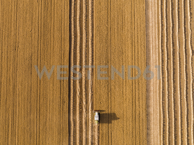 Serbia, Vojvodina. Combine harvester on a field of wheat, aerial view - NOF00013