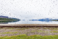 United Kingdom, Scotland, Loch Linnhe, Cuil Bay, rain drops on glass pane - WDF04452
