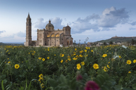 Malta, Gozo, Basilica Ta' Pinu, national shrine - FCF01360