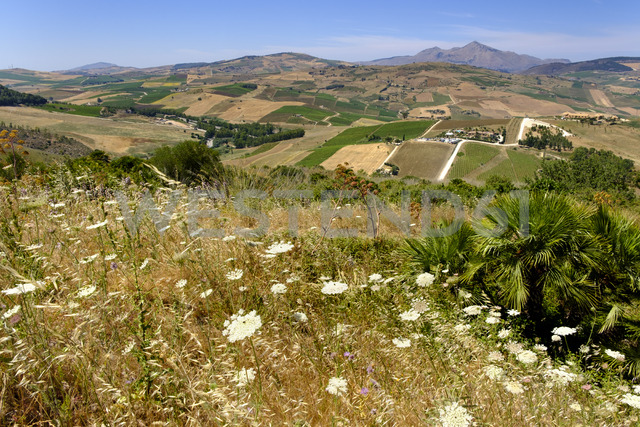 Italy, Province of Trapani, View from Theatre of Segesta to Agora di Segesta and Villa Palmeri - LBF01793