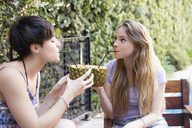 Two young women drinking cocktails in pineapples outside - LFEF00079