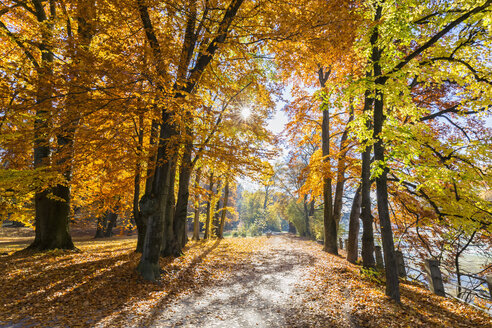 Germany, Bavaria, Munich, river Isar, path in autumn - FOF09866