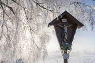 Germany, Bavaria, Upper Bavaria, Markt Schwaben, tree with hoar frost, field cross - FOF09932
