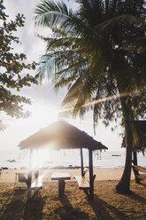 Thailand, Phi Phi Islands, Ko Phi Phi, beach resort in backlight - KKAF00890