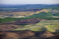 Aerial view of rolling landscape - CAIF00419