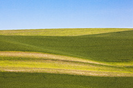 Sun and shade over rolling hills - CAIF00431