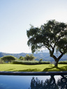 Swimming pool overlooking tree and mountains - CAIF00627