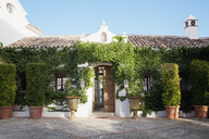 Potted topiaries and ivy surrounding villa entrance - CAIF00651