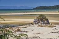 New Zealand, South Island, Abel Tasman National Park, beach landscape - MRF01744