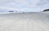 New Zealand, South Island, Dunedin, Otago Peninsula, Tomahawk Beach - MRF01765