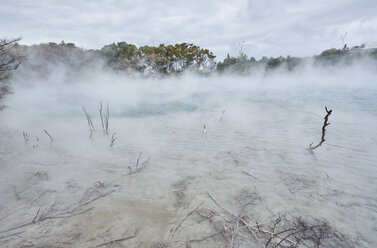 New Zealand, North Island, Rotorua, Thermal Lake - MRF01807