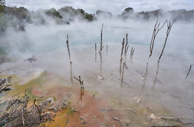 New Zealand, North Island, Rotorua, Thermal Lake - MRF01810