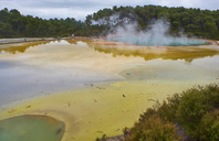 New Zealand, North Island, Wai-O-Tapu, Champagne Pool - MRF01816