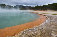 New Zealand, North Island, Wai-O-Tapu, Champagne Pool - MRF01819