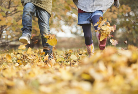 Children walking in autumn leaves - CAIF02283