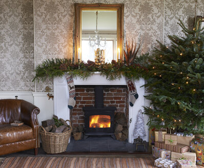 Christmas tree and fireplace in living room - CAIF02436