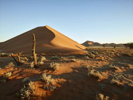 Africa, Namibia, Namib-Naukluft National Park, Namib desert, desert dunes - CVF00203