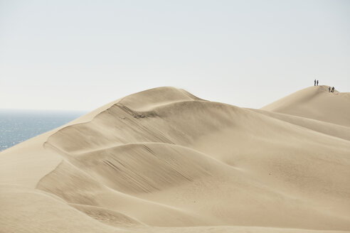 Africa, Namibia, Namib-Naukluft National Park, Namib desert, desert dunes and atlantic - CVF00209