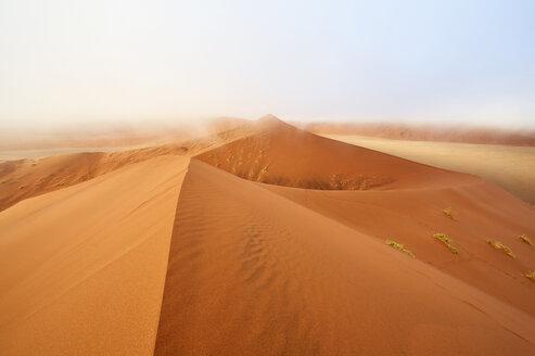 Namibia, Namib Desert, Sossusvlei, Namib-Naukluft National Park, Dune 45 and morning fog - CVF00215
