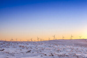 Great Britain, Scotland, East Lothian, Lammermuir HIlls, Wind Farm in winter at sunset - SMAF00963