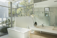 Sunny modern tranquil home showcase bathroom - HOXF00146