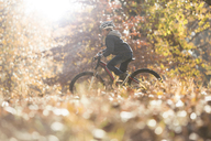 Boy bike riding in woods with autumn leaves - HOXF00587