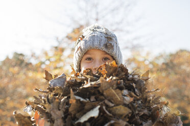 Portrait boy holding bunch of autumn leaves - HOXF00653