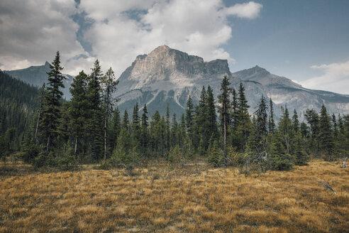 Canada, British Columbia, Columbia-Shuswap A, Rocky Mountains, Michael Peak, Yoho National Park - GUSF00330