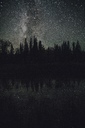 Canada, British Columbia, Liard River Hot Springs Provincial Park, starry sky at night - GUSF00363
